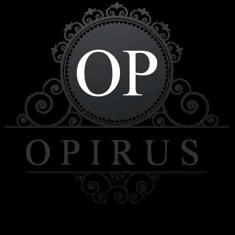گروه بازرگانی اپیروس